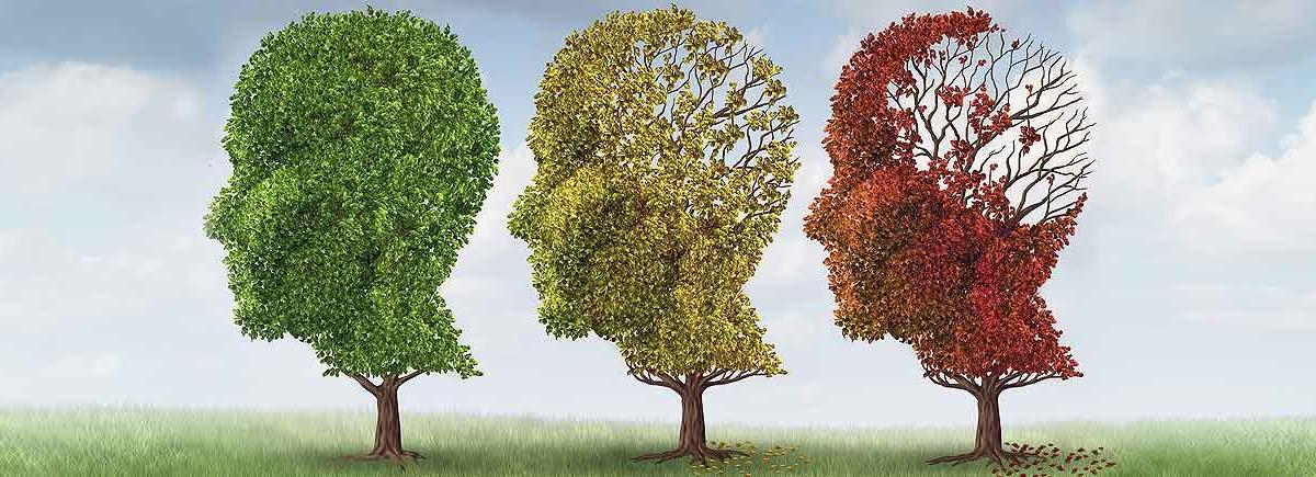 Как сохранить мозг после 40?